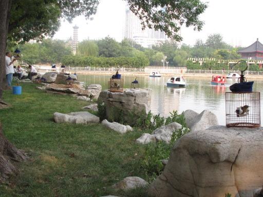 Jardin public en été